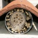 Nichoir abeilles sauvages - PVC et tuile