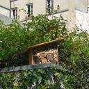 mini hotel à abeilles dans la jardin de mon immeuble