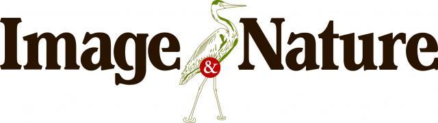 Logo Image et Nature